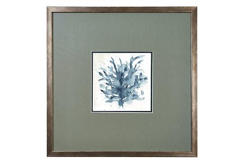 Coral No.1