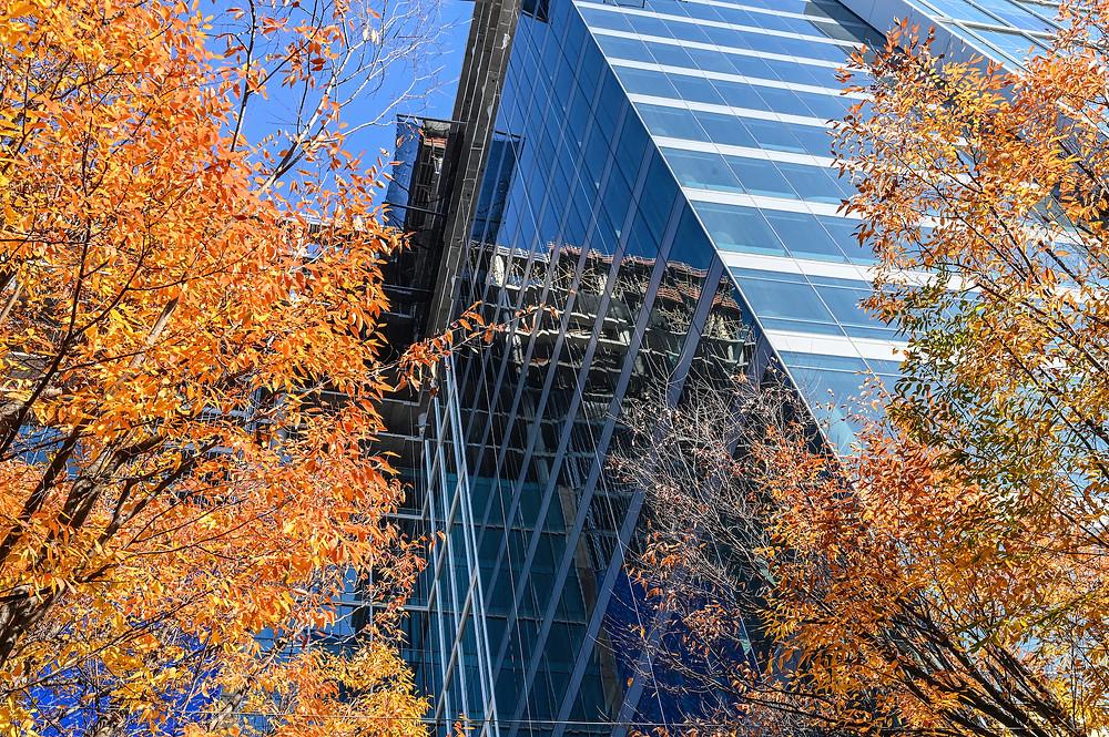 Marriott headquarters Bethesda, Wisconsin Avenue, Gensler, Hensel Phelps, Boston Properties, Bernstein Companies