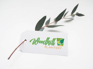 Woodhill Plantery logo design