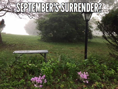 September's Surrender?