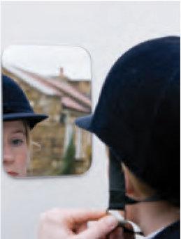 Ifor Williams Grooms Door Vanity Mirror - B0163