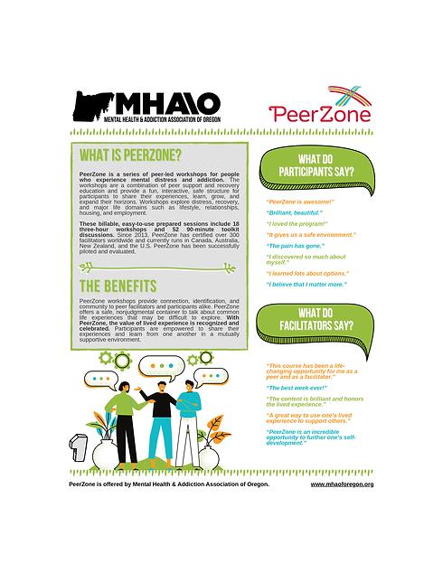 PeerZone+Flyer+-+WASHCO1.png