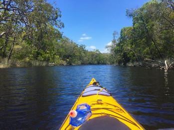 Noosa Everglades, Queensland