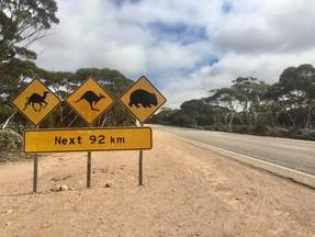 Nullabor Desert, South Australia
