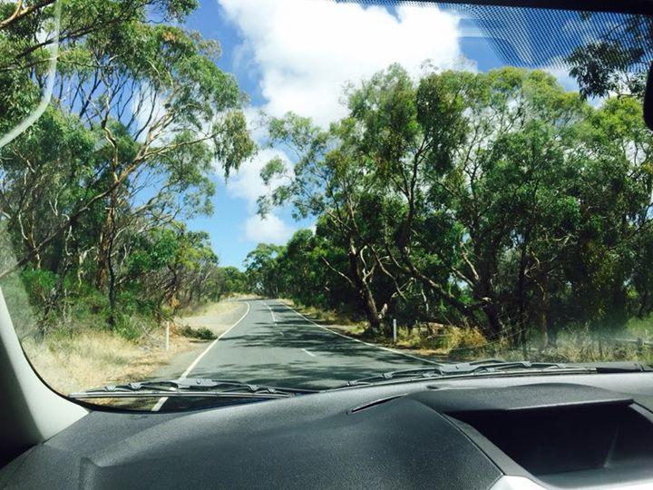 Blewitt Springs, South Australia