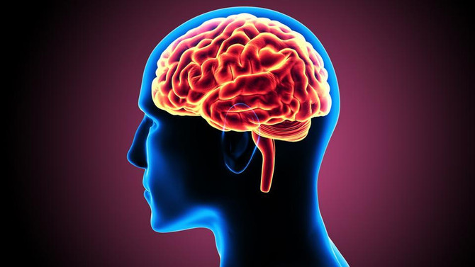 Ways to Stimulate the Brain