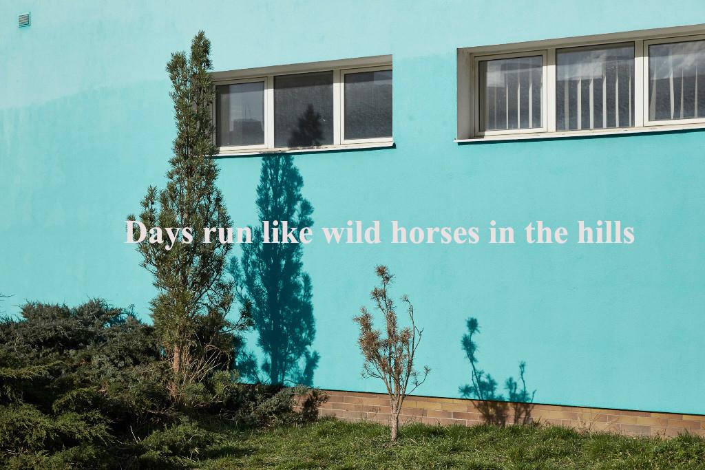 "Série ""Days run like wild horses in the hill"""