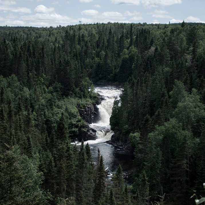 The river in the forest