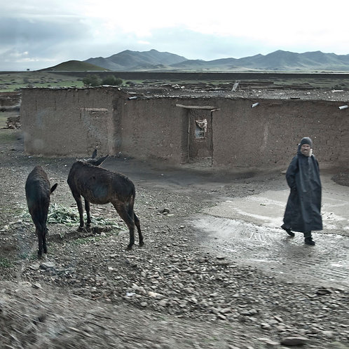 Man and donkey in the village