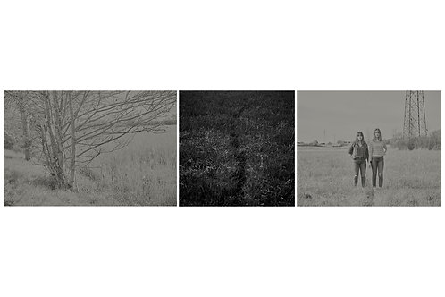 Triptyque Greytree + Trace in the grass + 2 girls in the fields