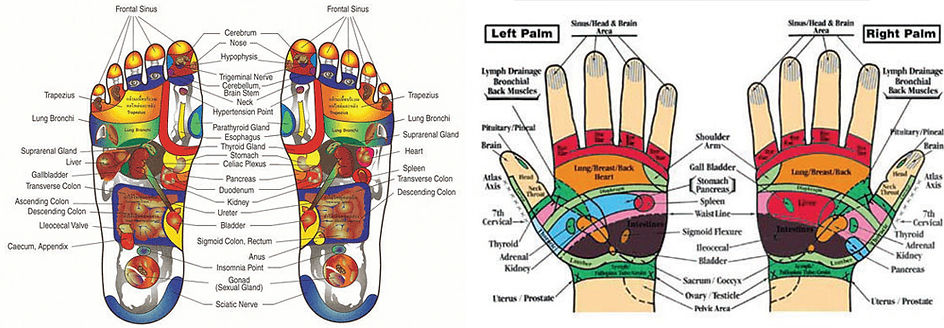maine reflexology