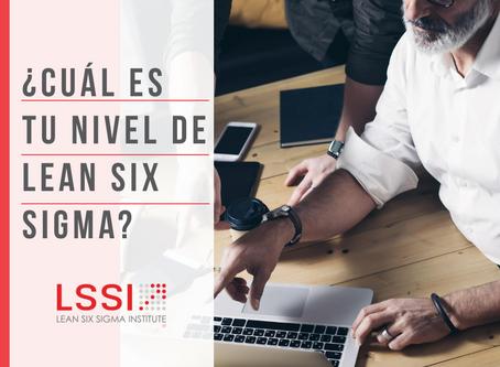 ¿En qué nivel de Lean Six Sigma estás?