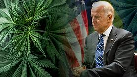 joe-biden-marijuana.webp