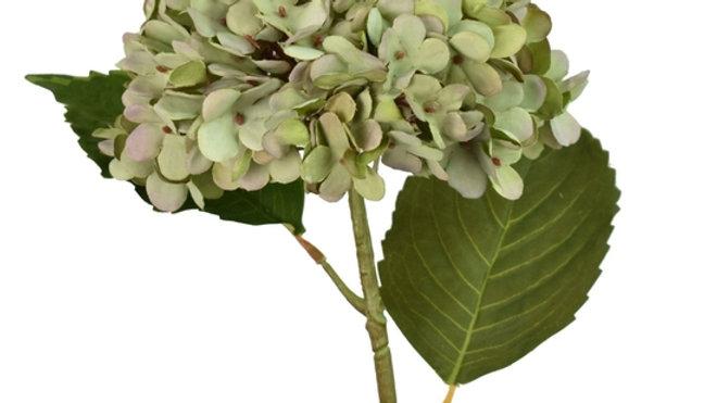 Green Hydrangea flowers (Artificial)