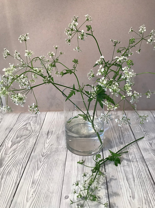 Medium Cylinder Glass Vase