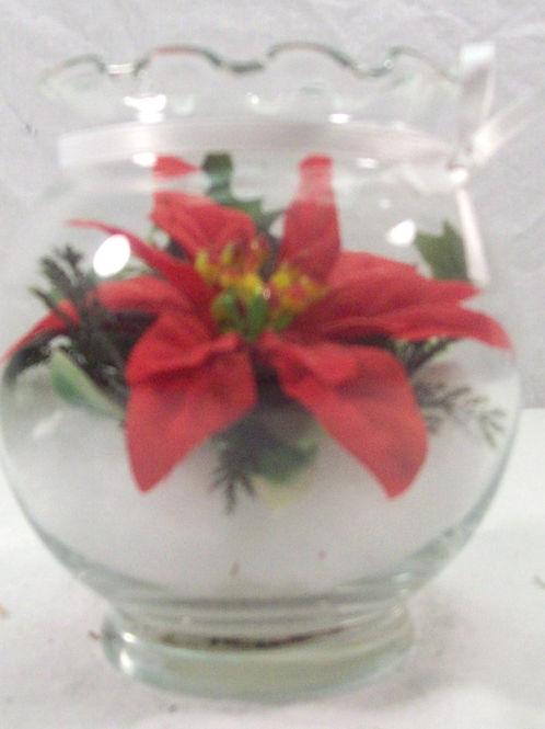 Poinsettia in Snow!