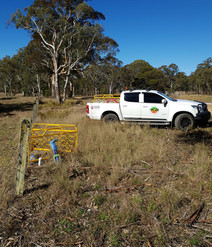 doing a underground service locate out the back of Kyogle area towards woodenbong.jpg