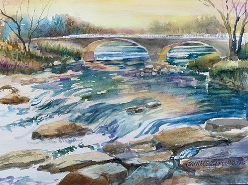 Main Street Rapids by Janiece Bergland