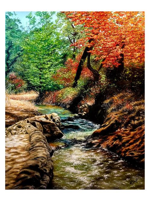 Winding Creek, Fine Art Print by Ashley Koebrick Schmidt