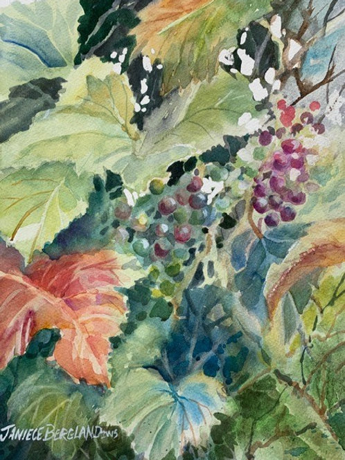 Late Summer Grapes by Janiece Bergland