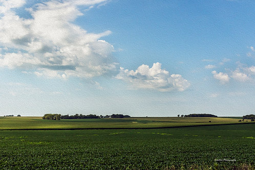 Midwest Farm, Fine Art Print by Stephen Schiller