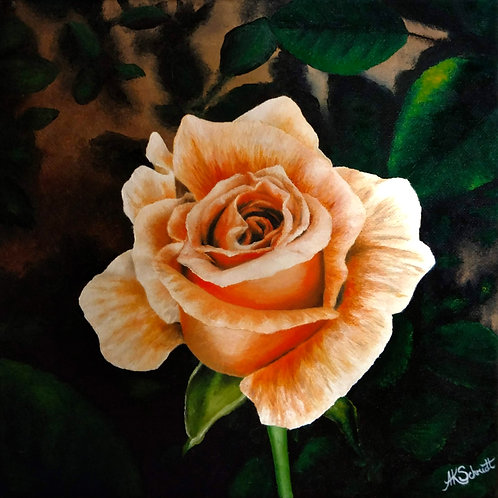 Winter Sunset Rose Bloom, Oil Painting by Ashley Koebrick Schmidt