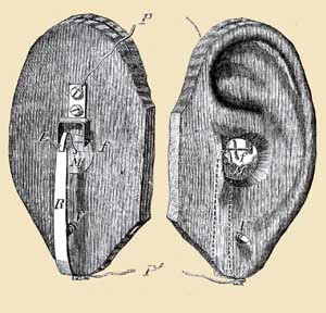 Two ears that have been carved out of wood and contain electronic components