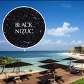 Black Nizuc, Acabados para albercas, spa