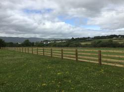 Abbeyglen Riding Stables, Kerry