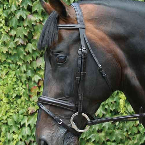 Mackey Legend Flash Bridle