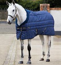 Abbeyglen Equestrian.jpg