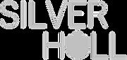 Silver Hull_transparent_original.png