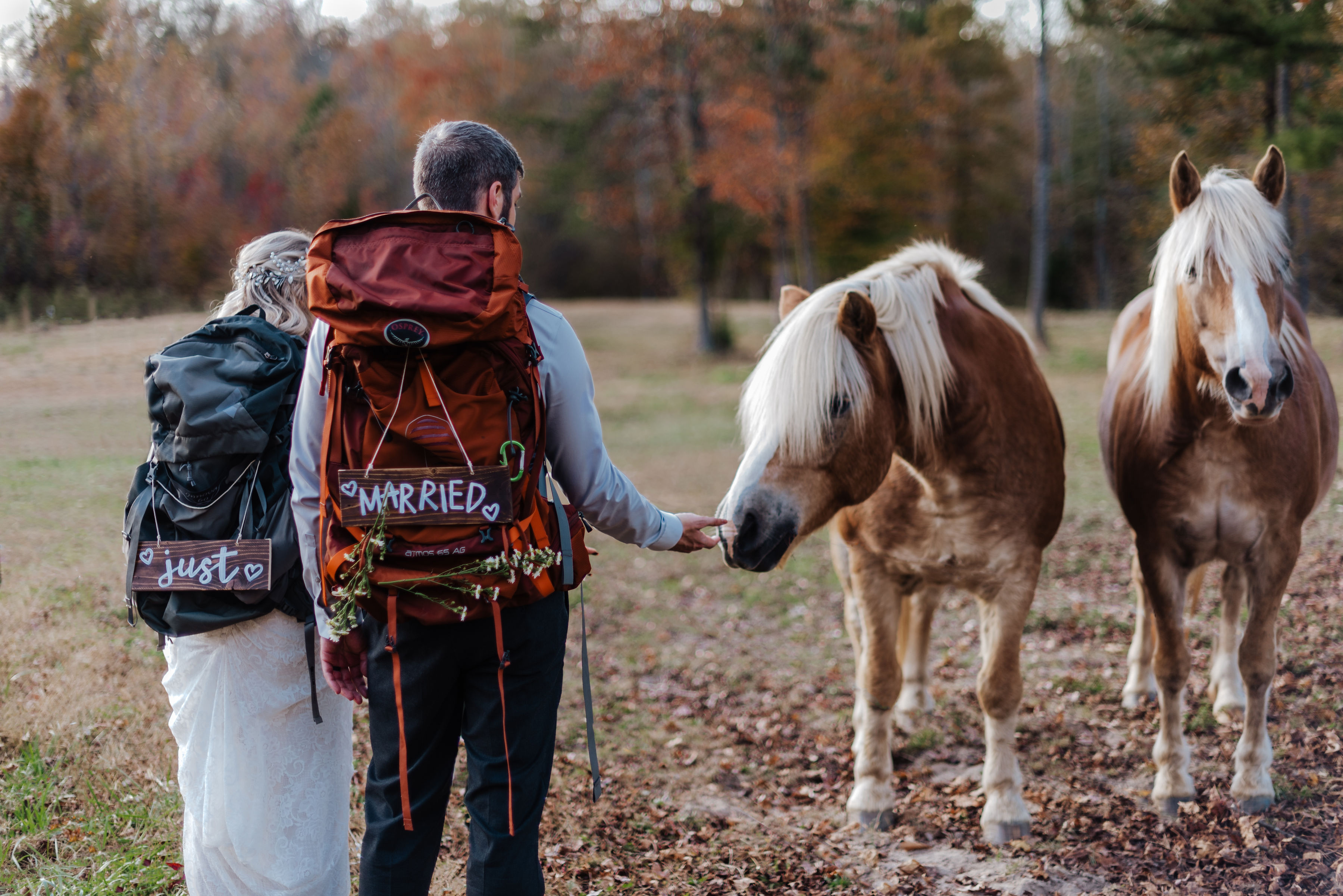 horse farm wedding venue with camping backpacks for an intimate mountain elopment