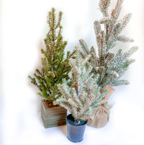 Miniature Faux Pine Trees - Various tabletop sizes
