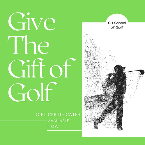 (18+) Adult Single Lesson Gift Certificate