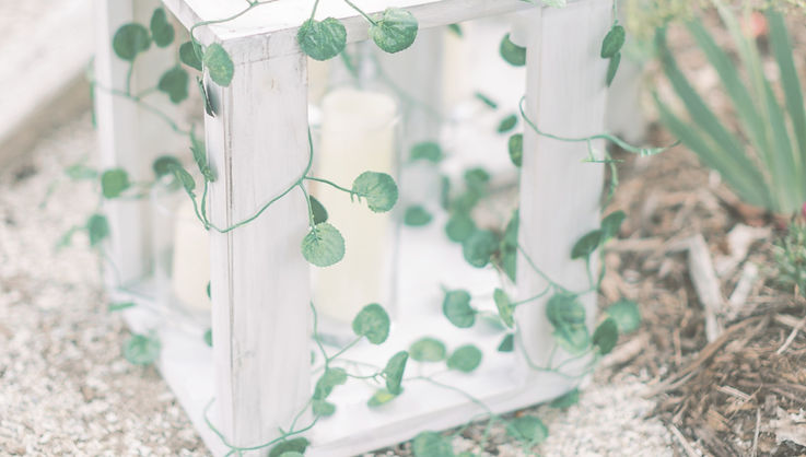 fairytale wedding scenery to set the mood at a virginia wedding by raleigh wedding planner