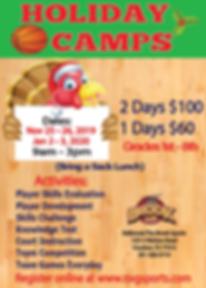 2019 - 2020 Holiday BB Camps_Nov-Jan.png