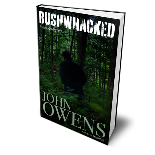 BUSHWACKED BY JOHN OWENS COVER.png