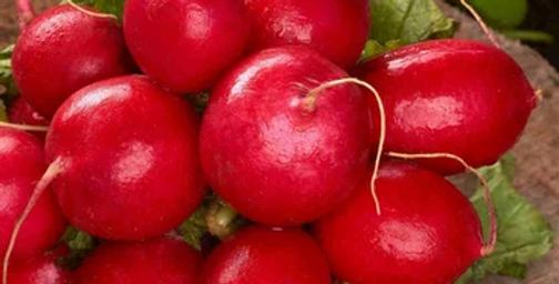 Radish - Cherry Belle