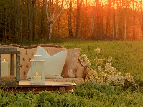 Golden tones, golden hour