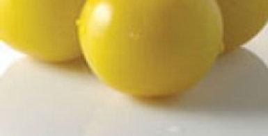 Tomato - Golden Queen