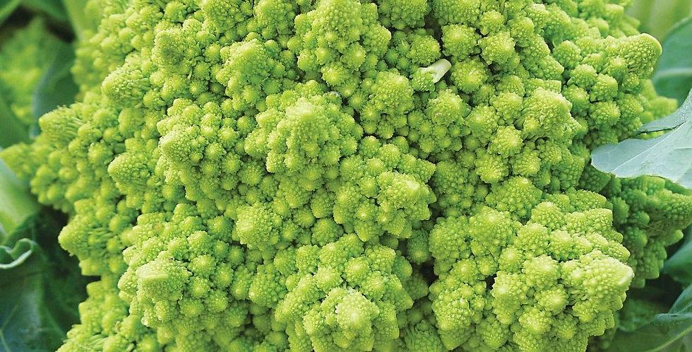 Cauliflower - Romanesco