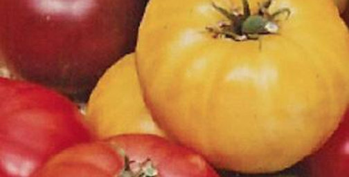 Tomato - Heirloom Varieties