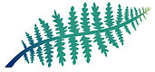 Fern_Screens-01.jpg
