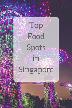 Top Food Spots in Singapore