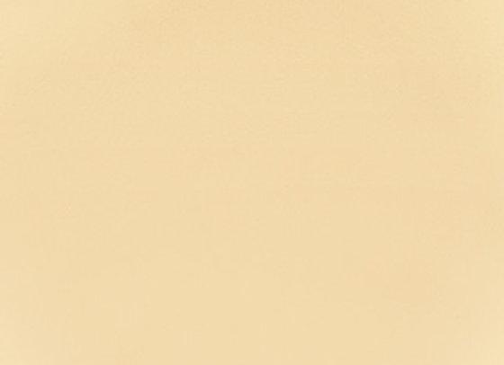 F2864 Vanilla