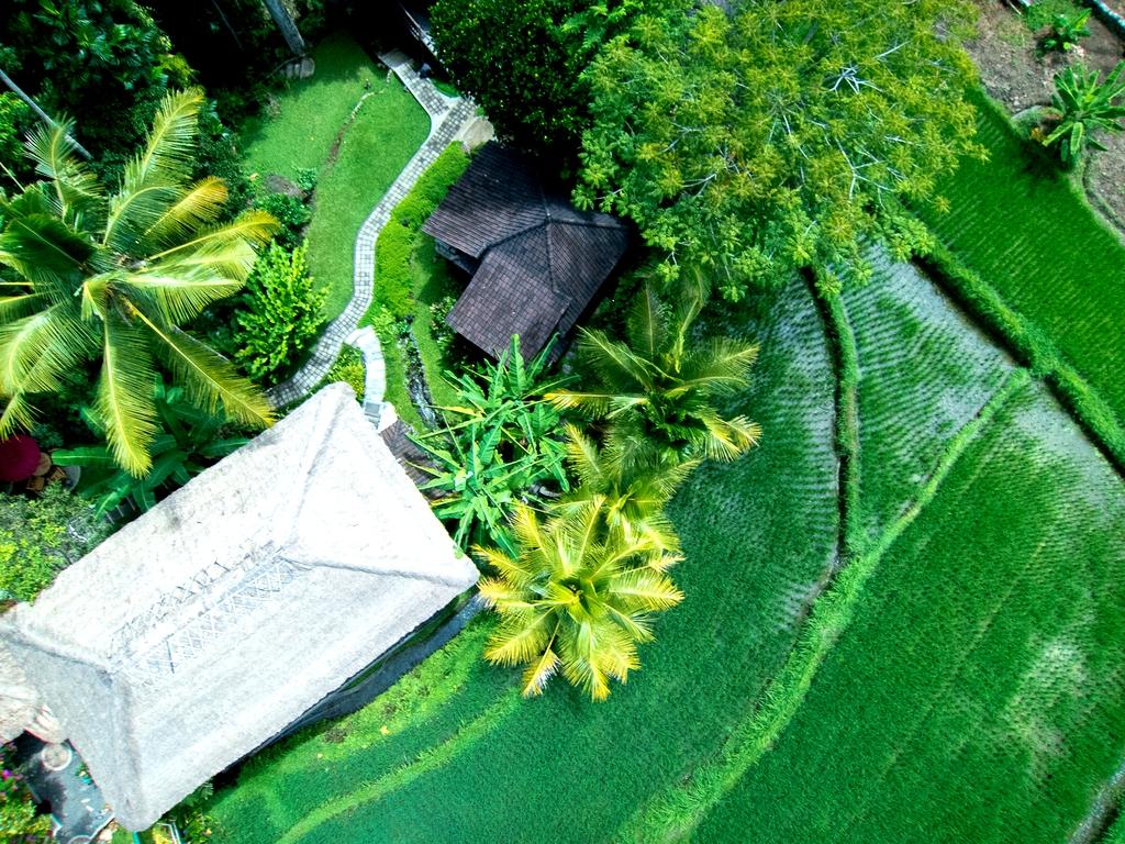 Prashanti Eco Hotel Ubud Bali