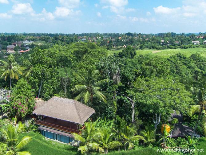 A few days in Ubud, Bali