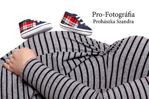 Pro-Fotografia_pocak_web.jpg
