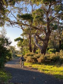 Port Albert to Tarra Trail